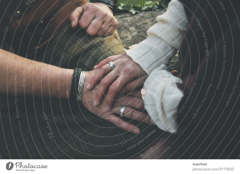 männliche und weibliche hand mit eheringen Mann Frau Ehe Hochzeit Heirat verheiratet Liebe Braut Romantik Feste & Feiern Erwachsene Paar Ehemann Ehefrau Hand
