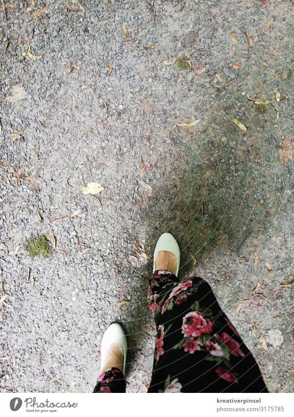 Der Weg Sommer Moos Wald mehrfarbig rosa schwarz weiß Farbfoto Außenaufnahme Muster Textfreiraum oben Tag Vogelperspektive Wege & Pfade Wegrand Spaziergang
