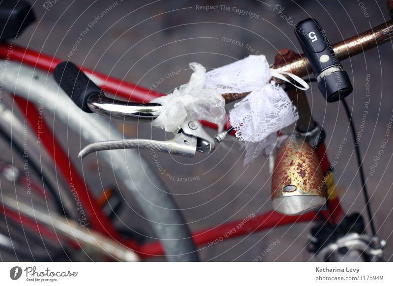 Alter Esel alt Sommer rot schwarz Gesundheit kalt Ausflug Metall Verkehr retro Fahrrad glänzend Fahrradfahren Klima Fahrradtour Hochzeit