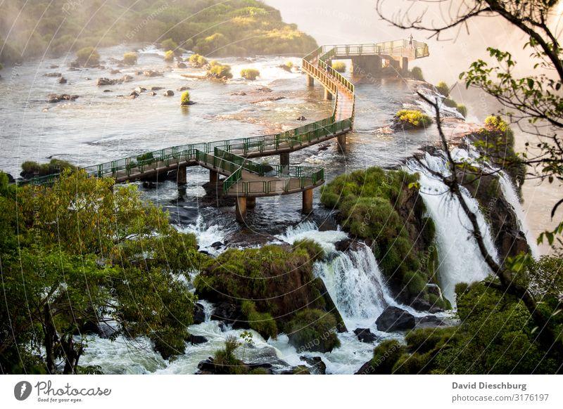 Morgens alleine am Iguazu Ferien & Urlaub & Reisen Natur Sommer Pflanze Wasser Landschaft Baum Tier Frühling Tourismus Idylle Abenteuer Sträucher Schönes Wetter