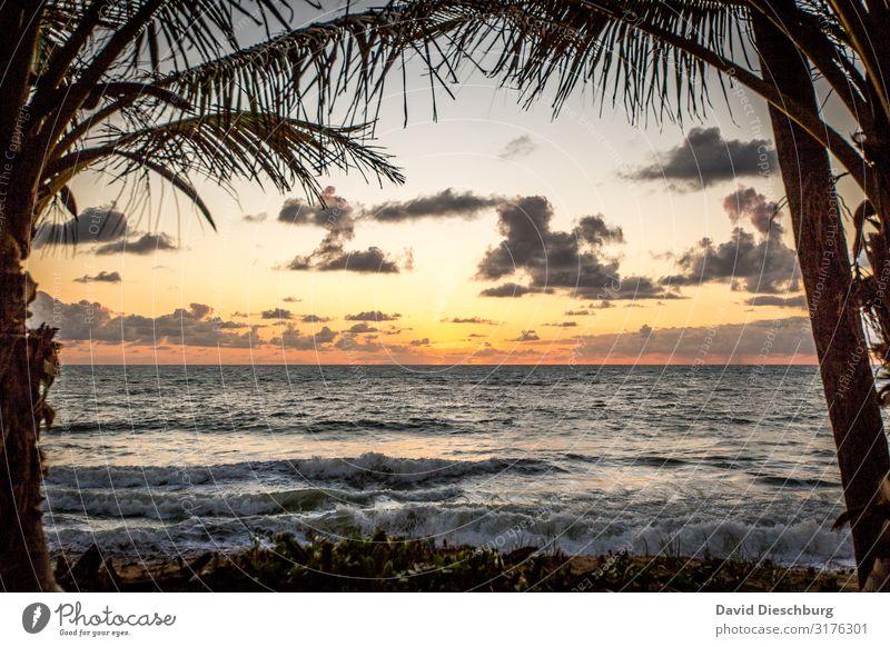 Gate to paradise Himmel Ferien & Urlaub & Reisen Natur Sommer Pflanze Landschaft Erholung Wolken Tier Ferne Religion & Glaube Frühling Küste Horizont Wellen