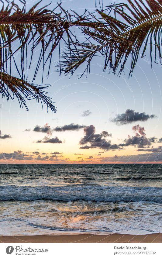 Küste von Bahia Ferien & Urlaub & Reisen Ferne Sommerurlaub Sonnenbad Natur Landschaft Himmel Wolken Frühling Schönes Wetter Pflanze Wellen Strand Bucht Meer