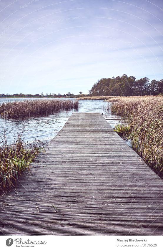 Retro-getontes Bild eines hölzernen Piers am See im Herbst Erholung Ferien & Urlaub & Reisen Tourismus Ferne Freiheit Sommerurlaub Natur Landschaft Himmel