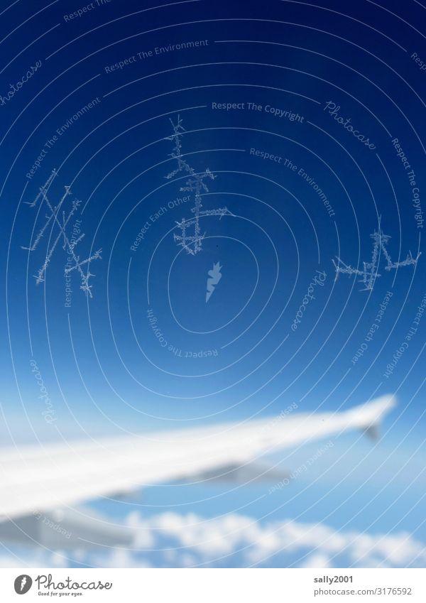 unbekannte Schriftzeichen... Himmel Schönes Wetter Luftverkehr Passagierflugzeug Flugzeugausblick Tragfläche Zeichen fliegen schreiben ästhetisch