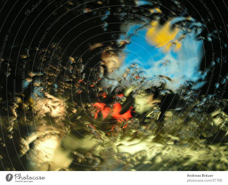 Durchblick? Lichtspiel Nacht Scheibenwischer Windschutzscheibe Autobahn Hinweisschild Orientierung gelb schwarz Verkehr Perspektive Regen blau