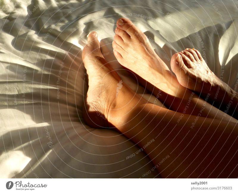 Hautsache | Fußablage... Häusliches Leben Bett Schlafzimmer feminin Freundschaft Paar 2 Mensch berühren Erholung Kommunizieren liegen ästhetisch Erotik