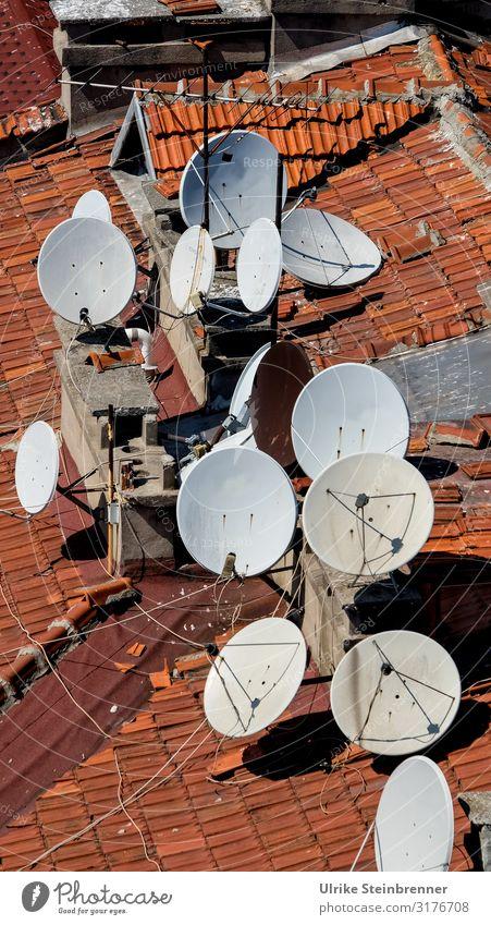 Auf Empfang Ferien & Urlaub & Reisen Tourismus Städtereise Istanbul Türkei Asien Stadt Stadtzentrum Altstadt Haus Gebäude Dach Antenne Satellitenantenne stehen