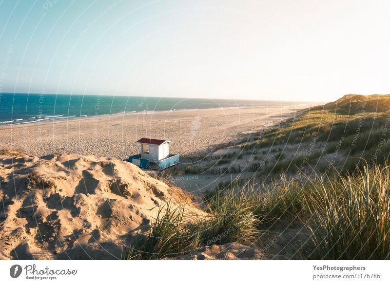 Ferien & Urlaub & Reisen Natur Sommer Landschaft Deutschland Sand hell Europa Schönes Wetter Hügel Sommerurlaub Nordsee Klimawandel Naturschutzgebiet