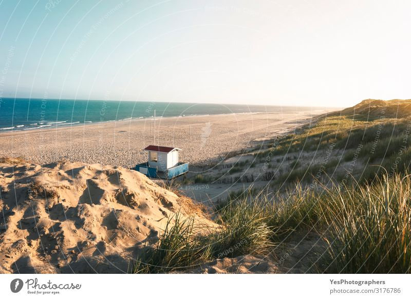Sommerstrand und Dünenlandschaft. Sonniger Strandtag an der Nordsee Ferien & Urlaub & Reisen Sommerurlaub Natur Landschaft Sand Klimawandel Schönes Wetter Hügel