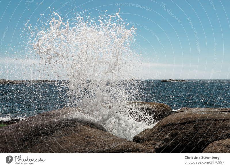 Die Gischt Wasser Wellen Meer Strand Küste Brandung Felsen Außenaufnahme blau Natur Himmel Horizont Urelemente Landschaft Wellengang Sommer Tasmanien Wasserloch