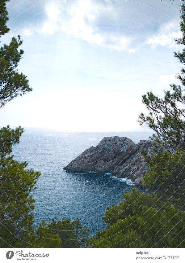 Weitblick Erholung ruhig Tourismus Ausflug Ferne Sommer Sommerurlaub Meer Insel Wellen Natur Landschaft Luft Wasser Himmel Wolken Baum Sträucher Wildpflanze