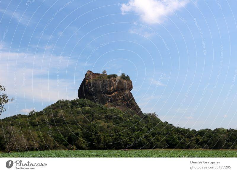 The Lion Rock on Sri Lanka UNESCO World Heritage Site Ferien & Urlaub & Reisen Tourismus Expedition Umwelt Natur Landschaft Klima Schönes Wetter Mauer Wand