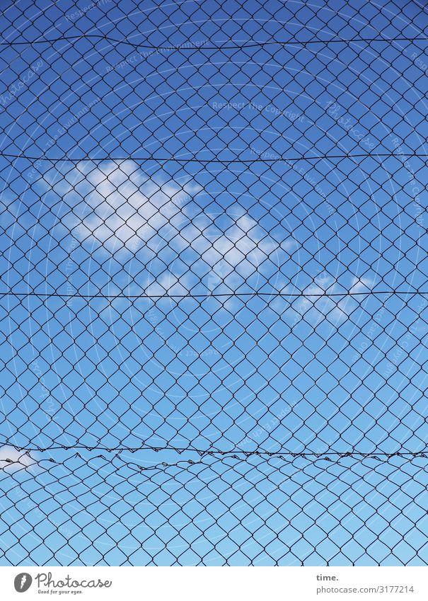Geschichten vom Zaun (III) Himmel Wolken Schönes Wetter Maschendrahtzaun Metall Linie Netz Netzwerk kaputt trashig blau Sicherheit Schutz Leben Ordnungsliebe