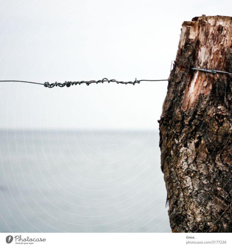 Geschichten vom Zaun (XI) Wasser Himmel Horizont Schönes Wetter Baumstamm Ostsee Zaunpfahl Draht Drahtseil Drahtzaun Holz Metall Schilder & Markierungen Linie