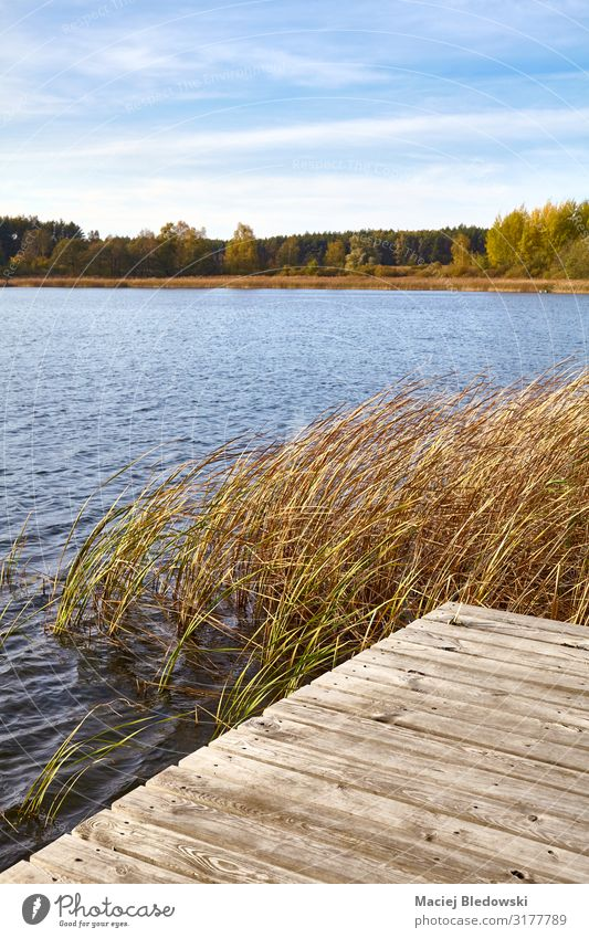 Seelandschaft mit einer hölzernen Mole. Erholung Ferien & Urlaub & Reisen Freiheit Sommer Sommerurlaub Natur Landschaft Himmel Herbst Seeufer Flussufer Brücke