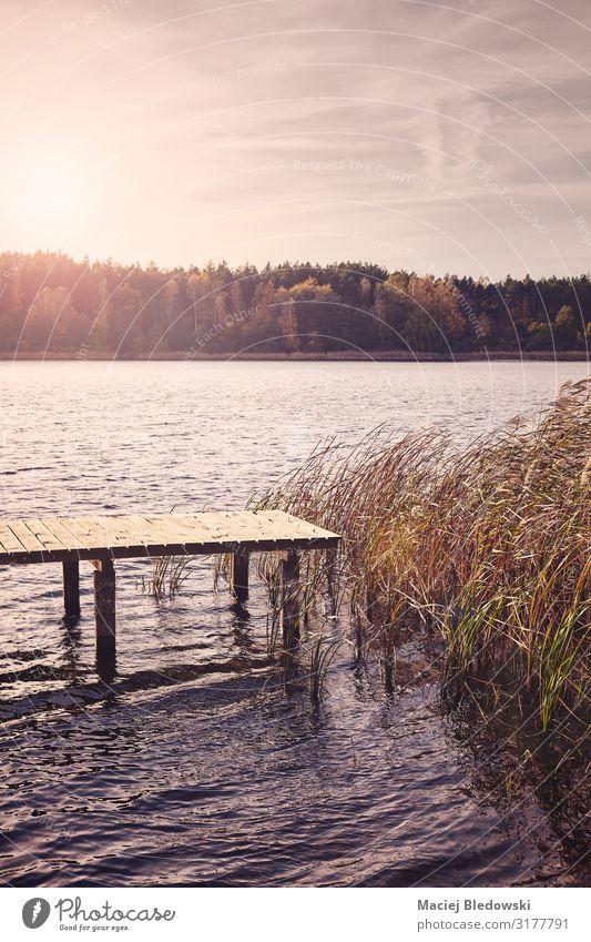 See mit einer Holzbrücke bei Sonnenuntergang. Erholung Ferien & Urlaub & Reisen Ferne Freiheit Sommerurlaub Natur Landschaft Himmel Herbst Gras Seeufer