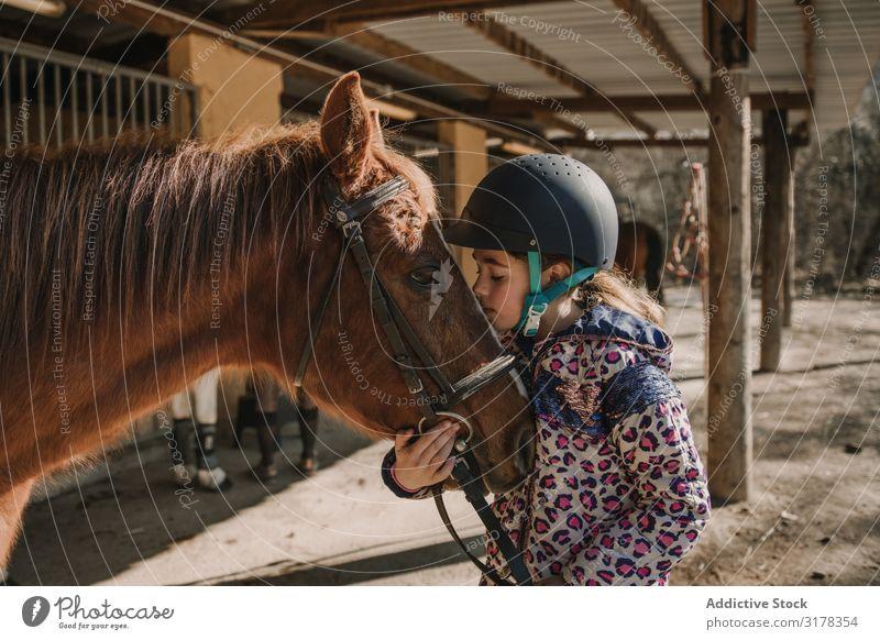 Mädchen, das ein Pferd küsst. Küssen Zaumzeug Pferdestall Verkaufswagen Schulunterricht Pferderücken Reiten Ranch Frau Tier Jugendliche Kind Fürsorge Gerät