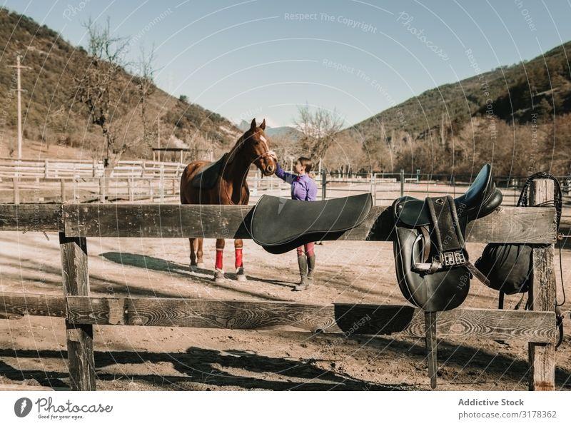Frau streichelt Pferd auf der Ranch Streicheln Schulunterricht Pferderücken Reiten Tier Liebe Jugendliche Glück Haustier Reiterin Hengst Stute Sonnenstrahlen