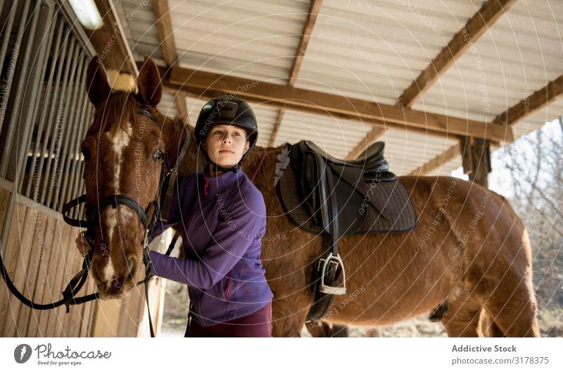 Frau und Mädchen bürsten Pferd Zaumzeug bürstend Pferdestall Verkaufswagen Schulunterricht Pferderücken Reiten Ranch Tier Jugendliche Kind Fürsorge Gerät