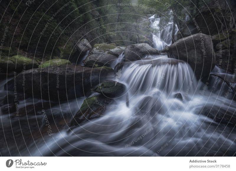 Majestätischer Wildwasserfall auf Felsen Wasserfall Natur Langzeitbelichtung Wald Landschaft frisch platschen Bewegung Ferien & Urlaub & Reisen strömen Fluss