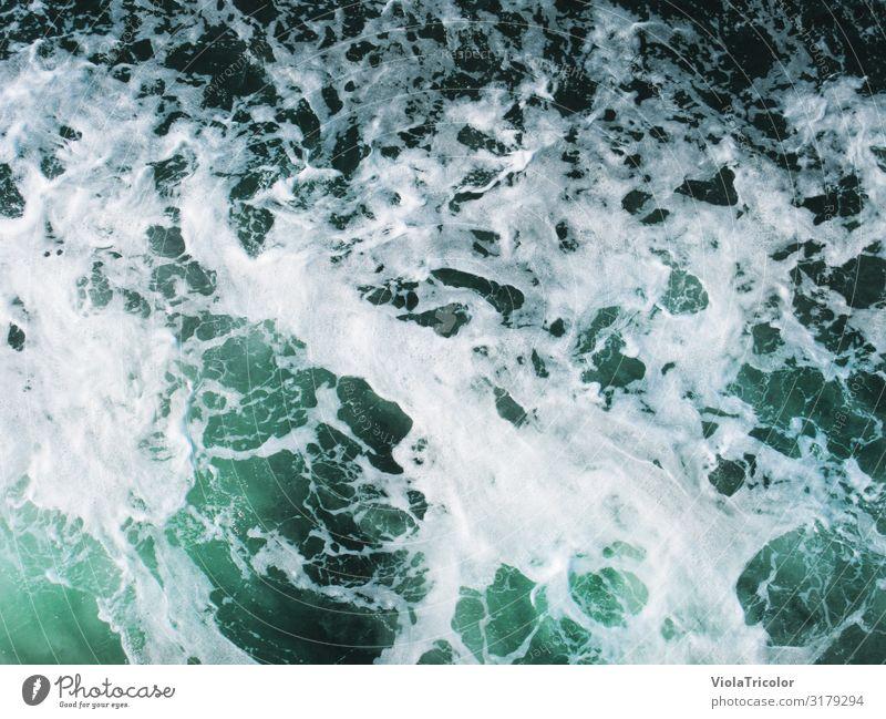 Meerschaum Ferien & Urlaub & Reisen Natur Sommer blau Wasser Küste Tourismus frisch Wellen Kraft Hafen Urelemente Ostsee Schifffahrt türkis