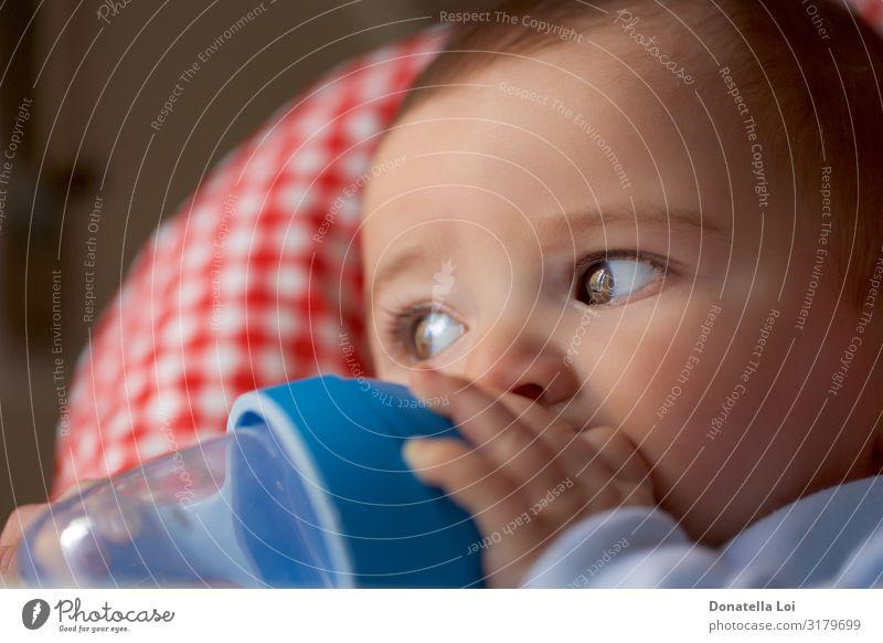 Porträt eines kleinen Jungen, der aus der Flasche trinkt. Ernährung Frühstück Getränk Trinkwasser schön Kind Baby kurzhaarig Kunststoff füttern Kindheit