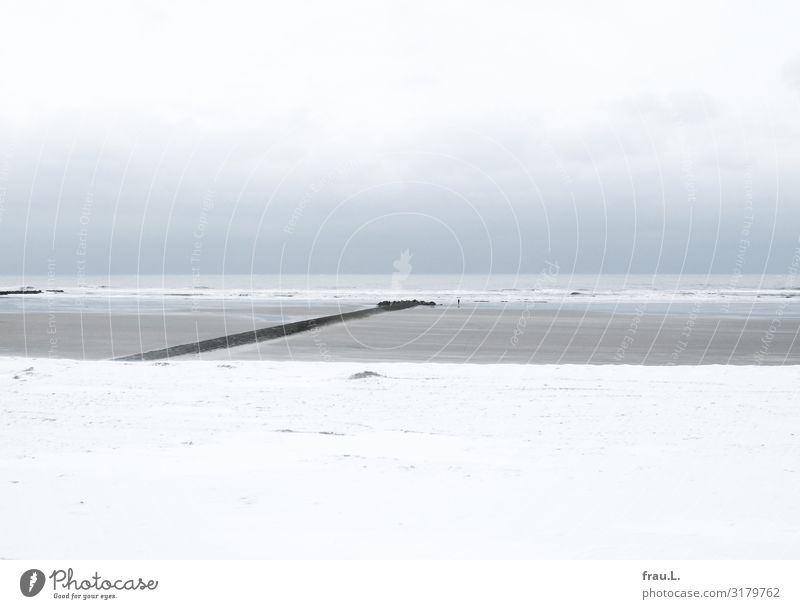 Schneemeer Ferien & Urlaub & Reisen blau schön weiß Meer ruhig Winter Strand Tourismus Ausflug Wellen Wellness Unendlichkeit Nordsee schlechtes Wetter