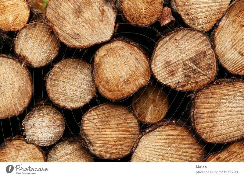 Frisch gesägte Stämme liegen im Wald abstrakt braun Durchschnitt Brennholz Holz Material Natur natürlich Stapel Strukturen & Formen Baum Baumstamm