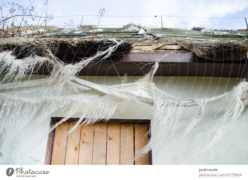 Fetzen eines Ferienheims lost places Himmel Winter Rügen Haus Mauer Wand Tür Dach Stofffetzen hängen authentisch dünn kalt kaputt lang weiß Stimmung ruhig