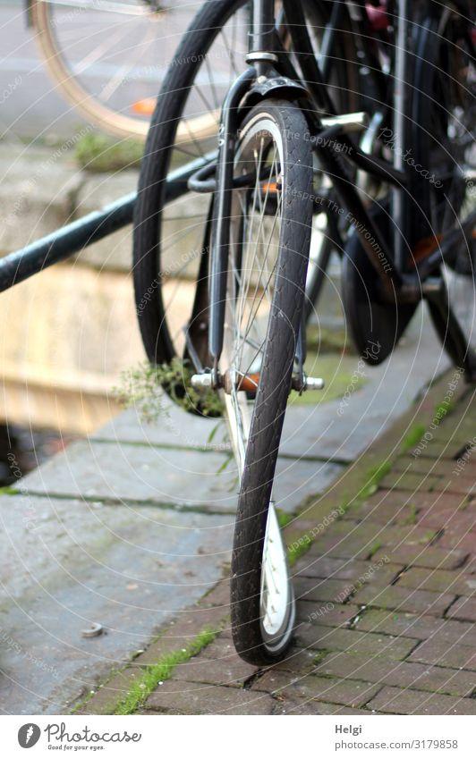 Detailaufnahme eines kaputten Fahrrades mit einer 8 im Rad am Straßenrand Amsterdam Stadt Pflastersteine Geländer Stein Metall stehen alt authentisch