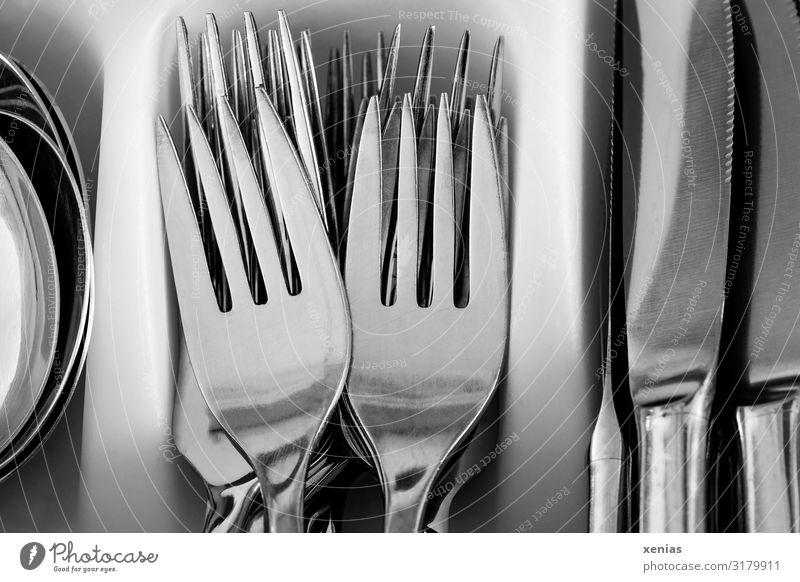 Gabel, Messer, Löffel Ernährung Besteck Sauberkeit silber weiß Edelstahl Besteckkasten Spitze xenias Gedeckte Farben Studioaufnahme Nahaufnahme Detailaufnahme