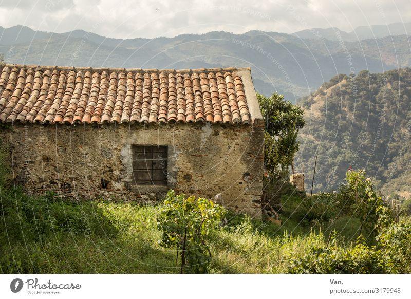 Häusle Natur Landschaft Himmel Gras Sträucher Garten Wiese Hügel Berge u. Gebirge Sizilien Italien Dorf Hütte Mauer Wand Fenster Dach authentisch schön Wärme