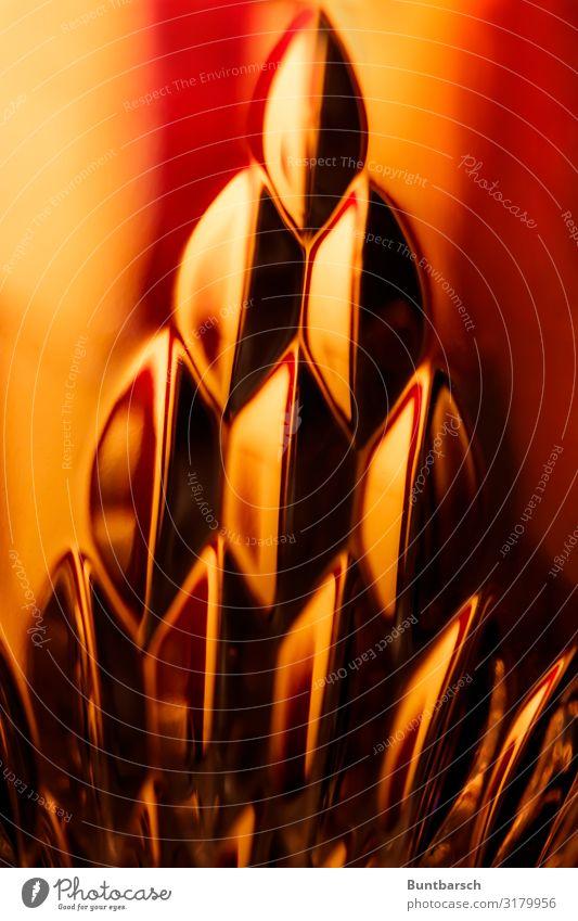 Somewhere only we know Glas Sektglas Whiskeyglas Spiegel Dekoration & Verzierung gelb gold rot Stimmung Licht Lichtschein Lichterscheinung Lichtbrechung Prisma