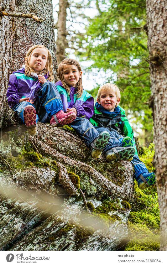 Drei Kinder im Wald, Portrait Glück Zufriedenheit Spielen Ferien & Urlaub & Reisen Ausflug Berge u. Gebirge wandern Mädchen Junge Geschwister Bruder Schwester