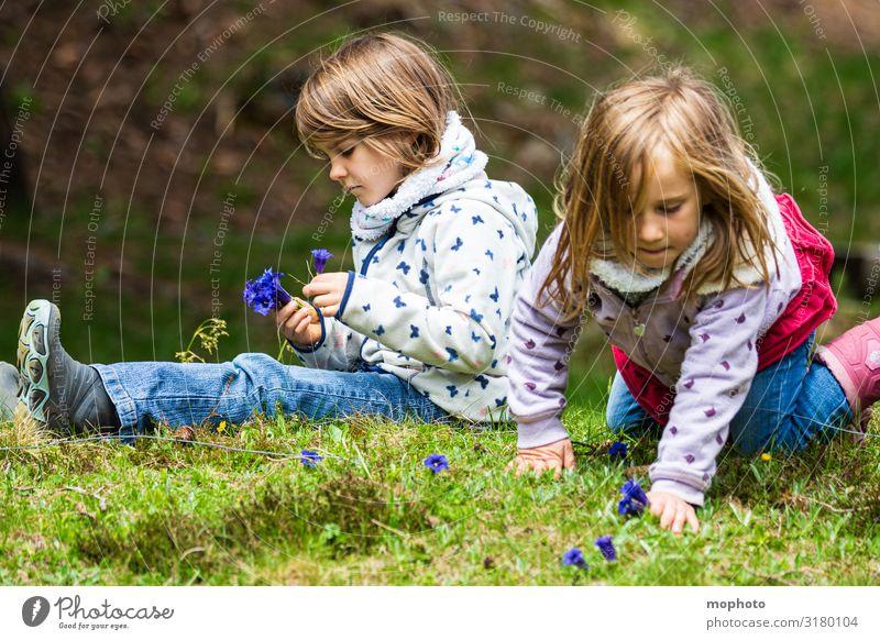 Enzian pflücken Ferien & Urlaub & Reisen Ausflug Abenteuer Berge u. Gebirge feminin Mädchen Geschwister Schwester Freundschaft Kindheit 2 Mensch 3-8 Jahre Natur