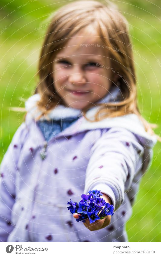 Enzian gepflückt Zufriedenheit Ferien & Urlaub & Reisen Tourismus Ausflug Abenteuer Kindererziehung Kindergarten Mensch feminin Mädchen Kindheit 1 3-8 Jahre