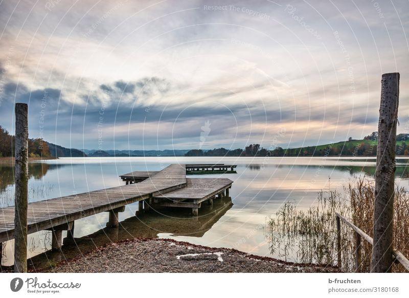 Holzsteg Natur Landschaft Wasser Himmel Wolken Herbst Seeufer Erholung Stimmung Glück Zufriedenheit Lebensfreude Idylle Steg leer ruhig mattsee