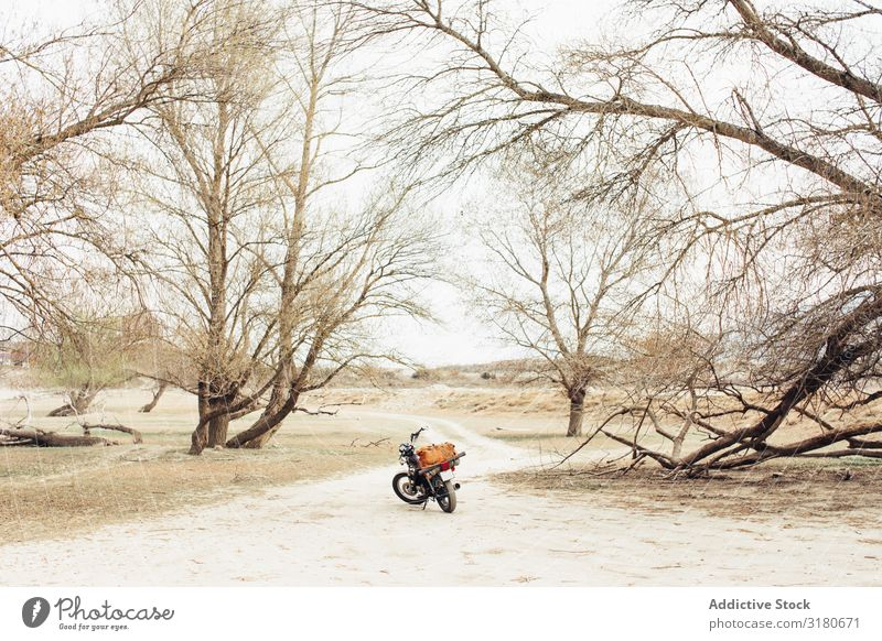 Motorrad auf der Landstraße Straße Landschaft Ferien & Urlaub & Reisen Natur Freizeit & Hobby Werkzeug Menschenleer Gerät Verkehr Wege & Pfade Pfosten Fahrzeug