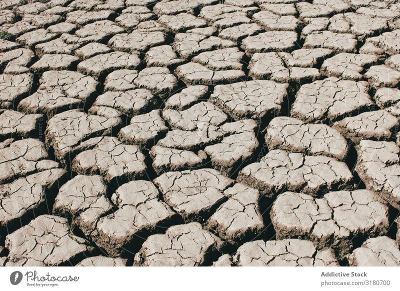 Risse auf trockenem Boden regenarm Landschaft Natur Dürre Erde heiß Sonnenstrahlen Tag Umwelt Landen Klima Ton Oberfläche Wetter Erwärmung kahl Erosion rau