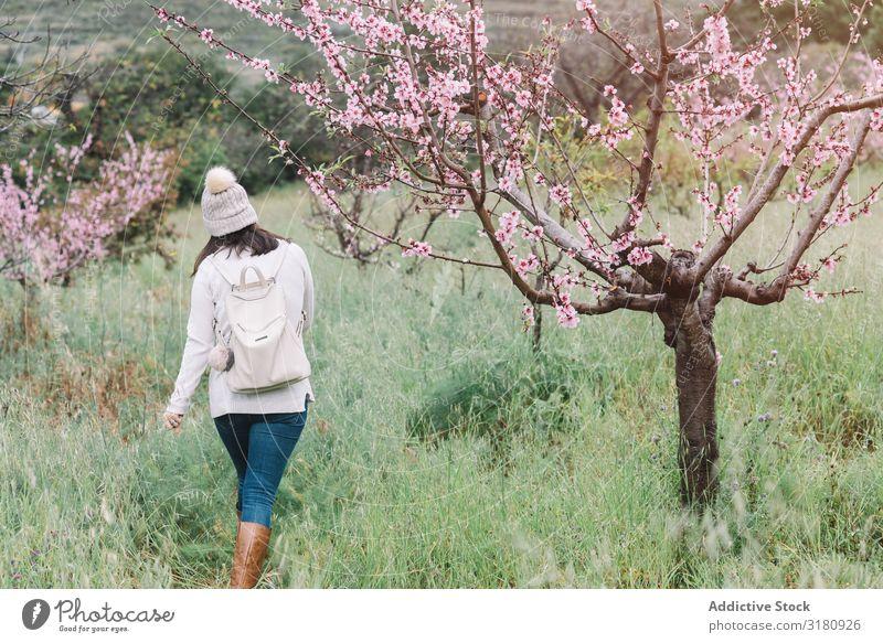 Anonyme Frau, die in der Nähe eines blühenden Baumes geht. Blume laufen Landschaft Frühling Ferien & Urlaub & Reisen Natur Freizeit & Hobby Lifestyle Ausflug