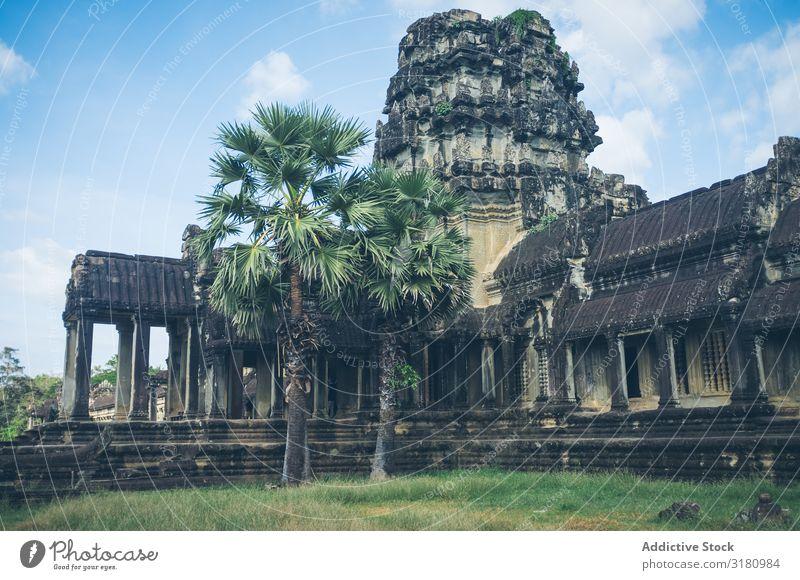 Garten um die alte Tempelanlage herum schwierig antik Orientalisch Baum Wahrzeichen Ferien & Urlaub & Reisen Kultur Religion & Glaube Architektur Tourismus