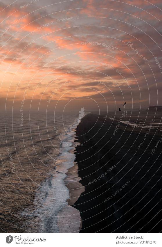 Isländischer Strand bei Sonnenuntergang Vik Island Reynisfjara Landschaft Felsen Meer Formation schwarz Panorama (Bildformat) Wasser Sand Reynisdrangar schön