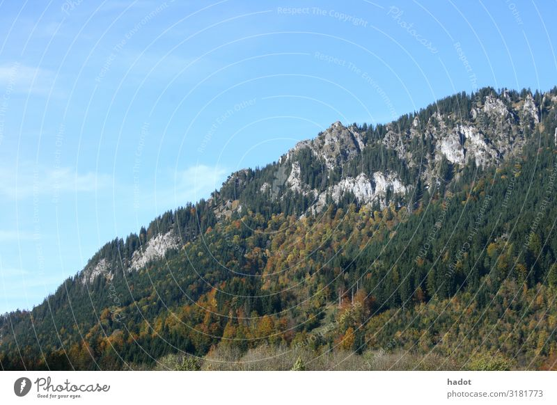 Felsenlandschaft Erholung Freizeit & Hobby Berge u. Gebirge wandern Klettern Bergsteigen Natur Landschaft Herbst Wald Schlucht Stein blau grün Mountains rocks