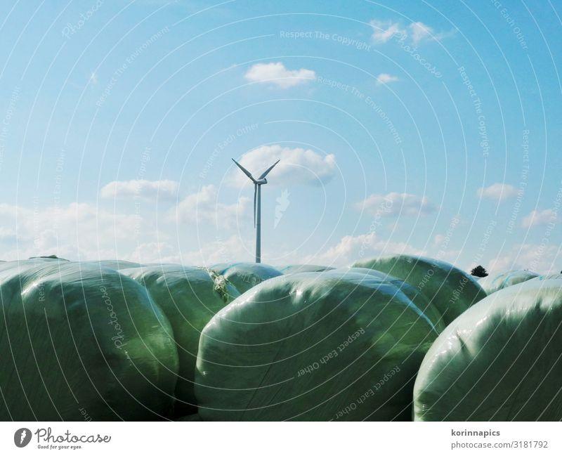 Silage Himmel Natur Umwelt Luft Zukunft Landwirtschaft Windkraftanlage Umweltschutz nachhaltig Forstwirtschaft Fortschritt Silo