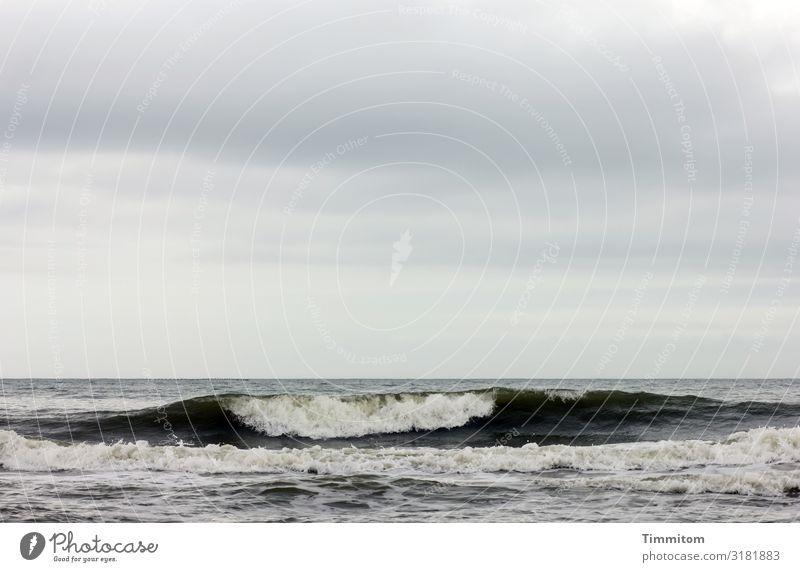 Nordsee, Himmel und dunkle Welle Wellengang Wasser Gischt Dänemark Wolken Menschenleer Außenaufnahme Natur Urelemente blau weiß grau schwarz Horizont