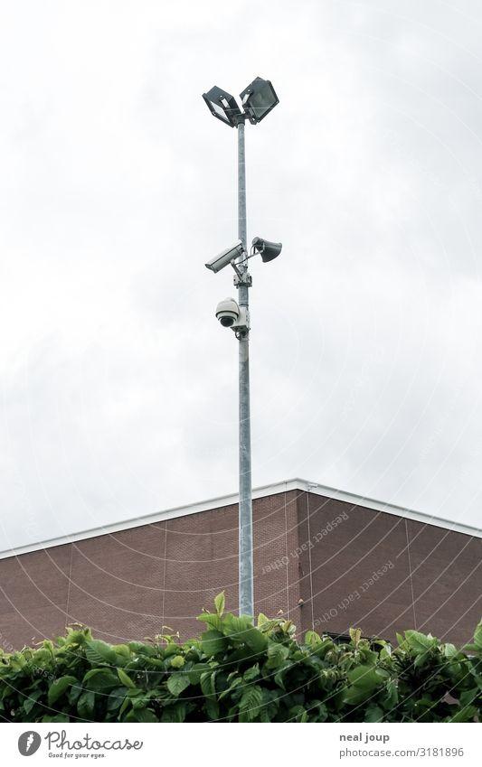 I spy -II- Videokamera Überwachungskamera Hecke Fassade beobachten gruselig hoch Neugier Stadt grau grün friedlich Wachsamkeit gewissenhaft Wahrheit Ehrlichkeit