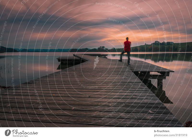 Der Tag endet. harmonisch Zufriedenheit ruhig Ferne Freiheit Mann Erwachsene 1 Mensch Natur Landschaft Himmel Wolken Herbst Seeufer beobachten genießen stehen