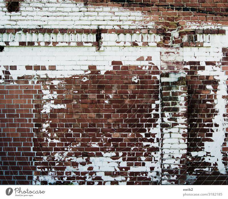 Schuppenflechte Gebäude Scheune Mauer Wand Backstein Backsteinwand alt Verfall Vergänglichkeit Zerstörung Zahn der Zeit Farbstoff abblättern Wandfries Farbfoto