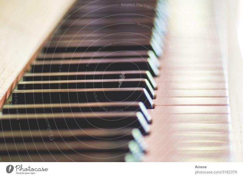 Glissando Musik Klavier Klaviatur Tasteninstrumente hören Spielen schwarz weiß Erfolg fleißig Freizeit & Hobby Freude Kunst perfekt Klang musizieren üben