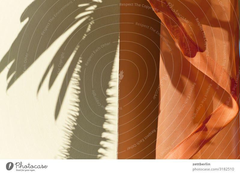 Schatten vom Kaktus Menschenleer Textfreiraum Strukturen & Formen Licht Vorhang Gardine Häusliches Leben Raum Innenarchitektur Stoff Textilien Falte Blatt